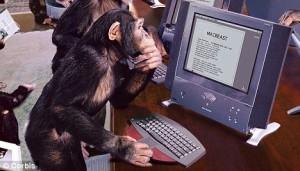 Trained Monkey